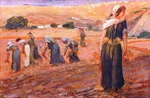 Ruth at work with other gleaners