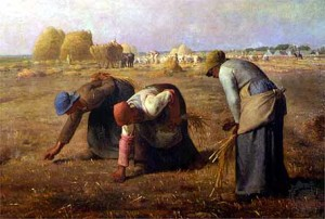 gleaners given work in Old Testament