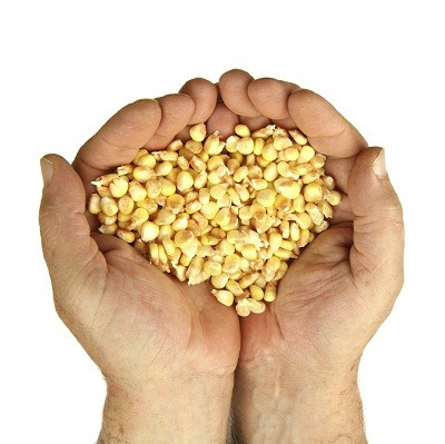 remnant is the seed corn