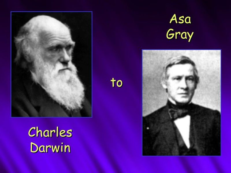 Charles Darwin wrote to Asa Gray